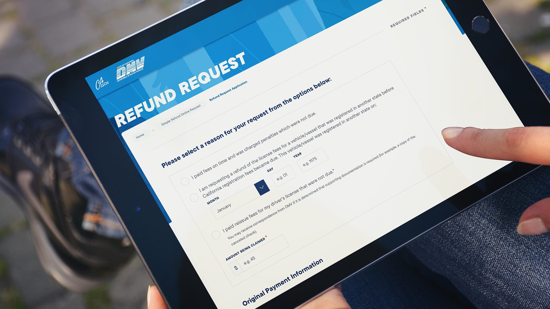 DMV Web Applications